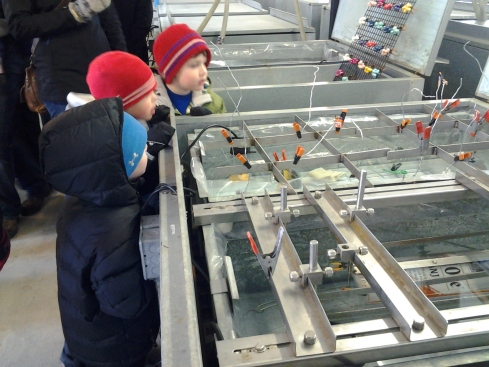 Children learn IceMaking at IceCultures