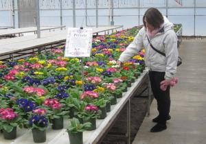 Trista enjoying the colours and blooms in the Greenhouse
