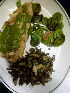 Lake Huron pickerel with Ramp Cream Sauce, Fiddleheads, Wild Rice and Mushrooms