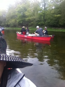 Canoeing on the Maitland