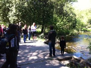 Wawanosh - Belgrave Creek