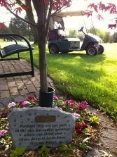 Cuzzy memorial
