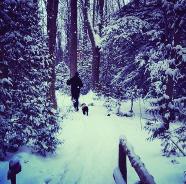 Winter trails ...