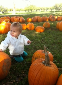 Bea choosing her pumpkin