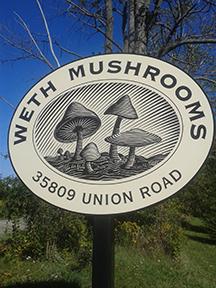 WethMushroomSign