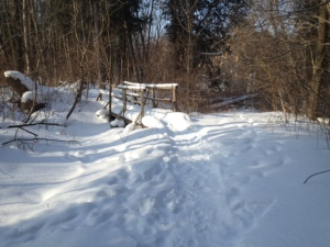 The Sawmill Trail, Bayfield.