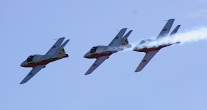 The Snowbirds fly in tight formation over Lake Huron's shoreline.