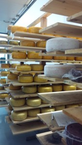 A tour of Blyth Farm Cheese was one of the weekend highlights.